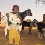 Kids for Kids helping people in remote Darfur by loaning goats