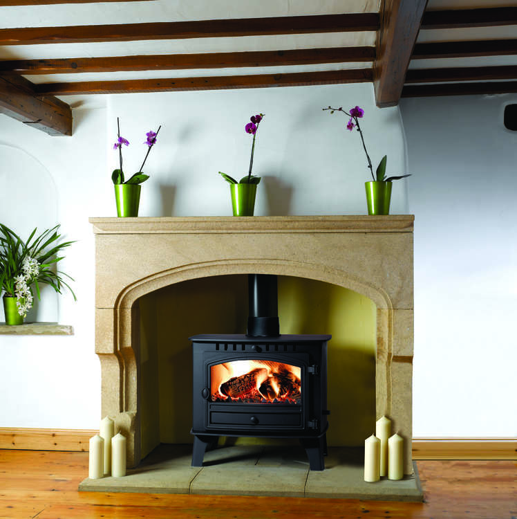 Click to read more about the Herald 14 Flat top multifuel stove